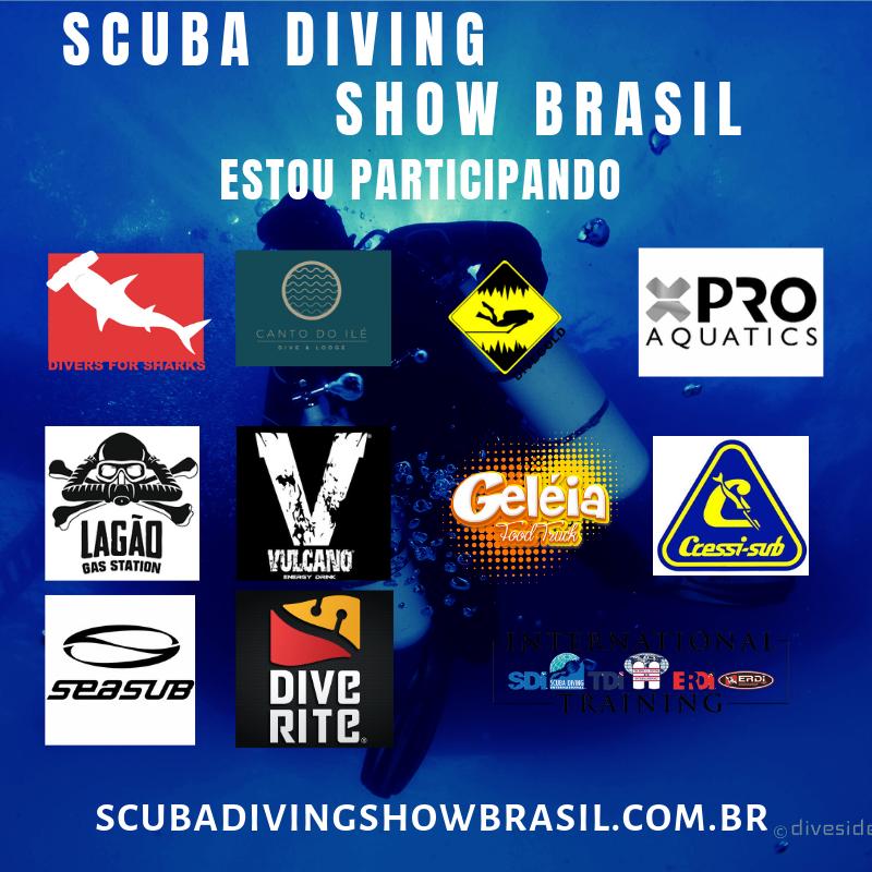 thumb-diver-for-sharks-fara-um-mergulho-em-brasilia-foto-002