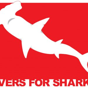 Adesivo Divers for Sharks