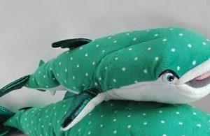 Tubarão Baleia Destiny