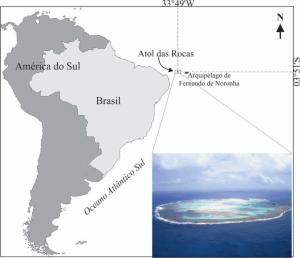 Foto ResearchGate - Atol das Rocas e Fernando de Noronha