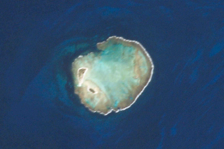 Atol das Rocas - Foto Wikipedia